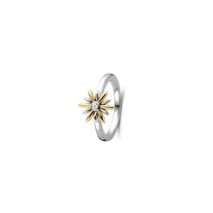 Дамски сребърен пръстен Ti Sento 12244ZY