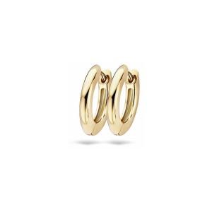 Златни дамски обеци Blush 7165YGO
