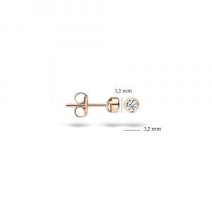 Дамски златни обеци Blush 7135RZI