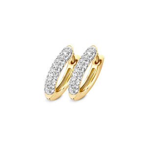 Дамски златни обеци Blush 7140YZI