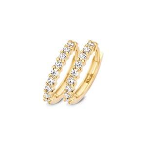 Дамски златни обеци Blush 7166YZI