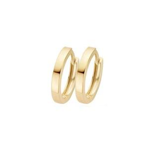 Дамски златни обеци Blush 7202YGO